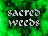 tn_sacred_weeds.jpg